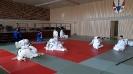 Judofreizeit Bettenfeld 2016_1