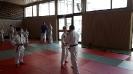 Judofreizeit Bettenfeld 2016_4